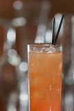 Grey hound cocktail Royalty Free Stock Images