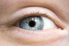 Grey human eye Stock Photos