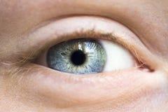 Grey human eye Stock Photos