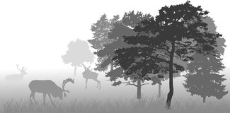 Grey illustration with deers in forest Stock Photos