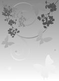 Grey Illustration With Cherry Tree Flowers Stock Images