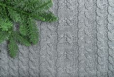 Grey knit background pine tree branches Knitted wool texture. Grey knit background with pine tree branches. Knitted wool texture royalty free stock photos