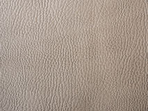 Grey leather. Sheet of grey leather . use for background Royalty Free Stock Images