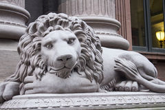 Grey Lion Statue Front Left Stock Image