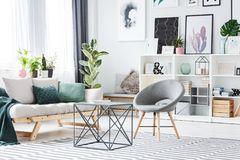 Grey living room interior. Metal table between grey chair and sofa with green cushions in bright living room interior with decorations and ficus Stock Images