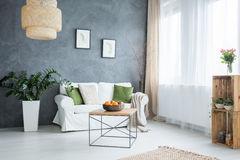 Grey living room with sofa Stock Image