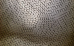 Grey Lizard Skin Royalty Free Stock Image