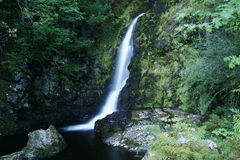 Grey Mares Tail Stock Image