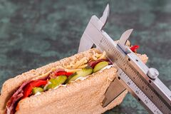 Grey Measuring Device on Brown Sandwich Stock Photography