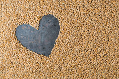 Grey metal heart from seeds of ripe golden wheat Royalty Free Stock Photos