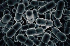 Grey microbes stock illustration