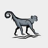 Grey Monkey Vector Stock Photo