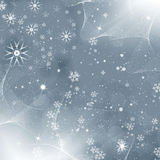 Grey monochromatic christmas cover Stock Photography