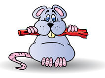 Grey Mouse. Cartoon a grey Mouse eat sausage isolated on white background Stock Images