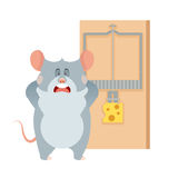 Grey mouse and a mousetrap Royalty Free Stock Photos