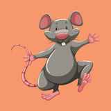 Grey mouse walking alone Royalty Free Stock Photos
