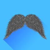 Grey Mustache Stock Images