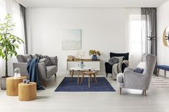 Grey and navy blue living room interior with comfortable sofa and armchairs