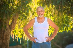 Grey Old Man in den Westen-Ständen lächelt gegen tropischen Baum lizenzfreie stockbilder