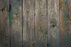 Grey old wooden plank Royalty Free Stock Images
