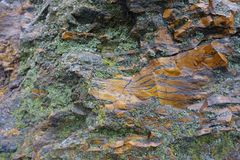 Gray and orange stone covered with lichen. Grey and orange stone covered with lichen royalty free stock images