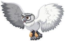 Grey owl Royalty Free Stock Photos