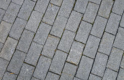 Grey pavement. Stock Images