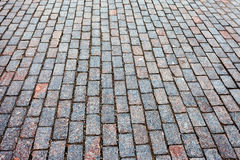 Grey paving stones Stock Images