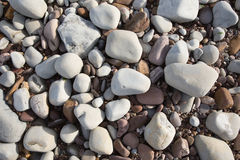 Grey pebbles and stones and shingle, a background texture found on the beach in St Audries Bay Somerset. Uk Stock Photography