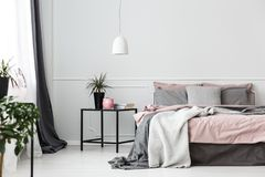 Grey and pink bedroom interior. Grey bedsheets on bed in pink bedroom interior with plant on the table against white wall stock images