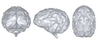 Grey polygonal brain. 3d rendering set of grey polygonal brains isolated on white royalty free illustration