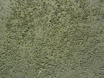 Grey porous surface. The texture of the plastered wall. Porous surface royalty free stock photos
