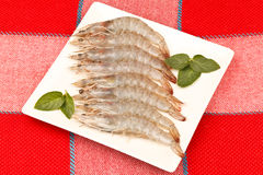 Grey Prawns Royalty Free Stock Image