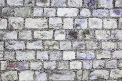 Grey and purple grunge brick wall background Royalty Free Stock Photos