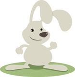 Grey rabbit. Gray rabbit with smiling face Stock Photography