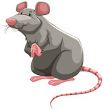 Grey rat. Standing with folded hands royalty free illustration