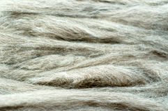 Grey raw wool background Royalty Free Stock Image