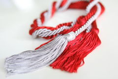 Grey and red ropes with tassel isolated Royalty Free Stock Photography