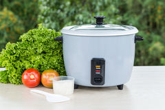 Grey rice cooker royalty free stock images