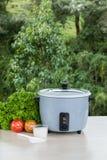 Grey rice cooker stock photo