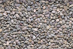Grey river pebble background Stock Image