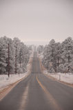 Grey Road. Countryside road after a snowy night in Colorado Stock Images