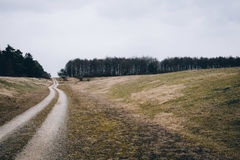 Grey Road Betwwen Green Grass Field Surrounded by Tress Royalty Free Stock Photos