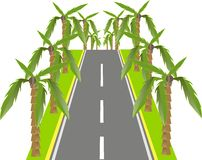 Grey road with green palms on the roadside, vector Royalty Free Stock Image