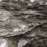 Grey rock texture. Royalty Free Stock Photos