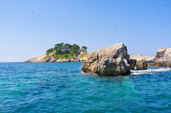 The grey rocks. Many swallows fly in the sky over the Katic island, looking for eat, Petrovac, Montenegro Stock Images
