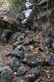 Grey rocks mountain dry foliage Royalty Free Stock Photo