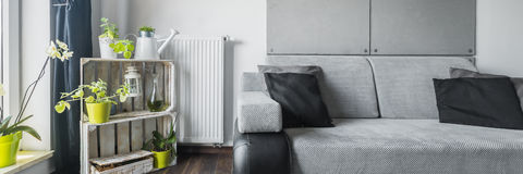 Grey room with green elements Stock Images