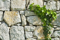 Grey rubble wall Stock Photo