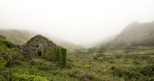 Grey Ruins in Green Field Royalty Free Stock Images